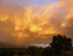 A bank of golden clouds hovers above the Earth