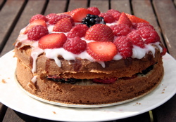 Homemade sponge cake with fruit on top!