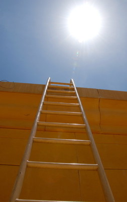 Use the rungs of opportunity to climb to your success