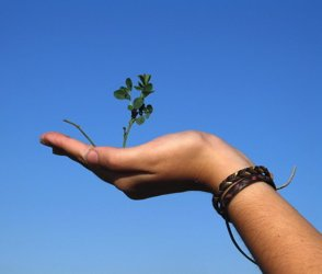 You always hold life in your hands